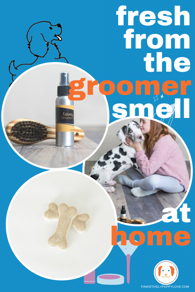 grooming spray with soap and great smelling dog